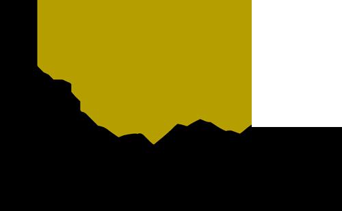 Elisa Cecchi Logo